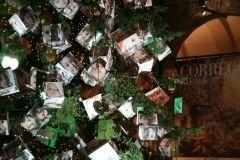albero2008164