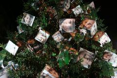 albero2008191