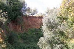 borgopiazza2marzo2011 164
