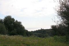 borgopiazza2marzo2011 170