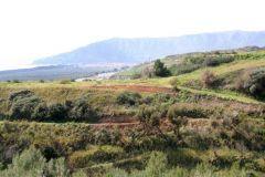borgopiazza2marzo2011 197