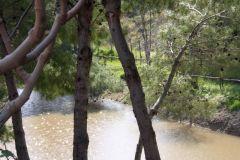 borgopiazza2marzo2011 204