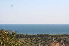borgopiazzamarzo2011 052