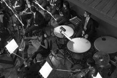 orchestra_5655