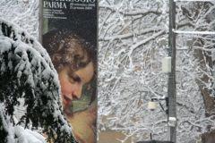 parma051