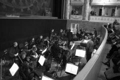 orchestra_7293