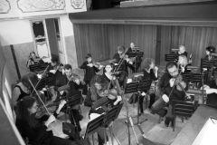 orchestra_8174