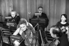 orchestra_8178