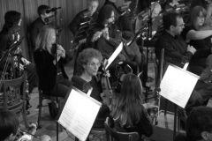 orchestra_8199
