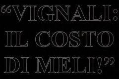 vignalimeli06