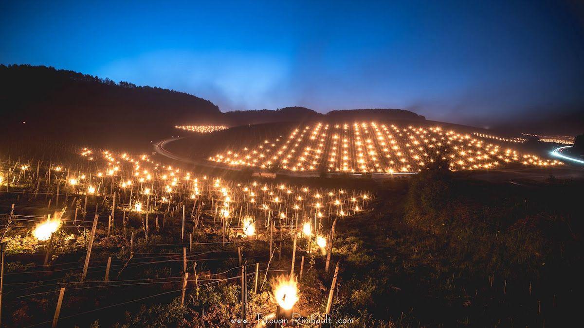 """L'Austria """"uno dei paesi più entusiasmanti d'Europa"""" per i vini arancioni"""