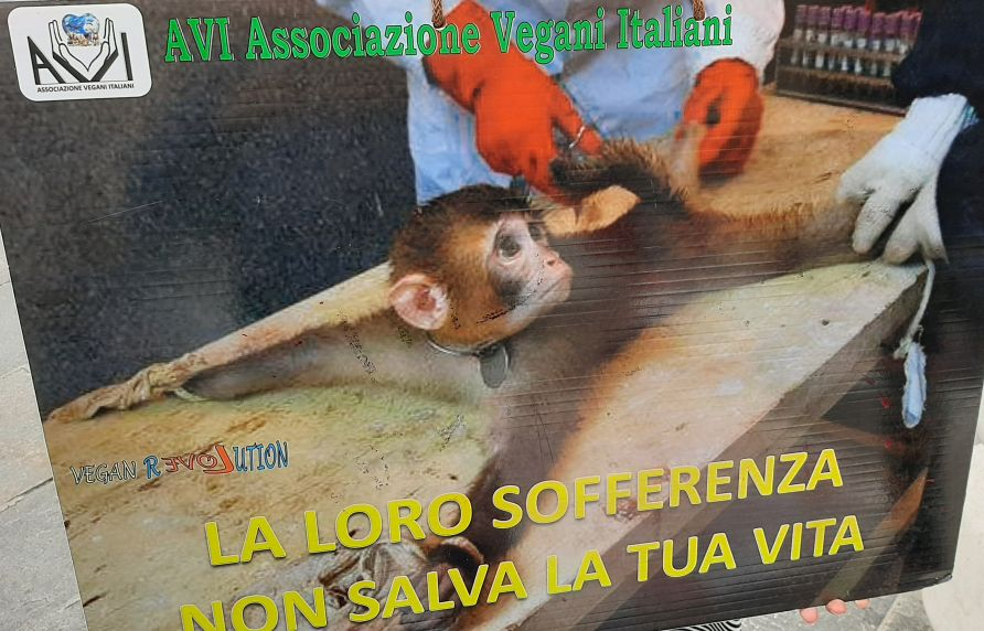 Protesta in Piazza Garibaldi a Parma per liberare i 6 macachi dalle gabbie dell'Università di Parma