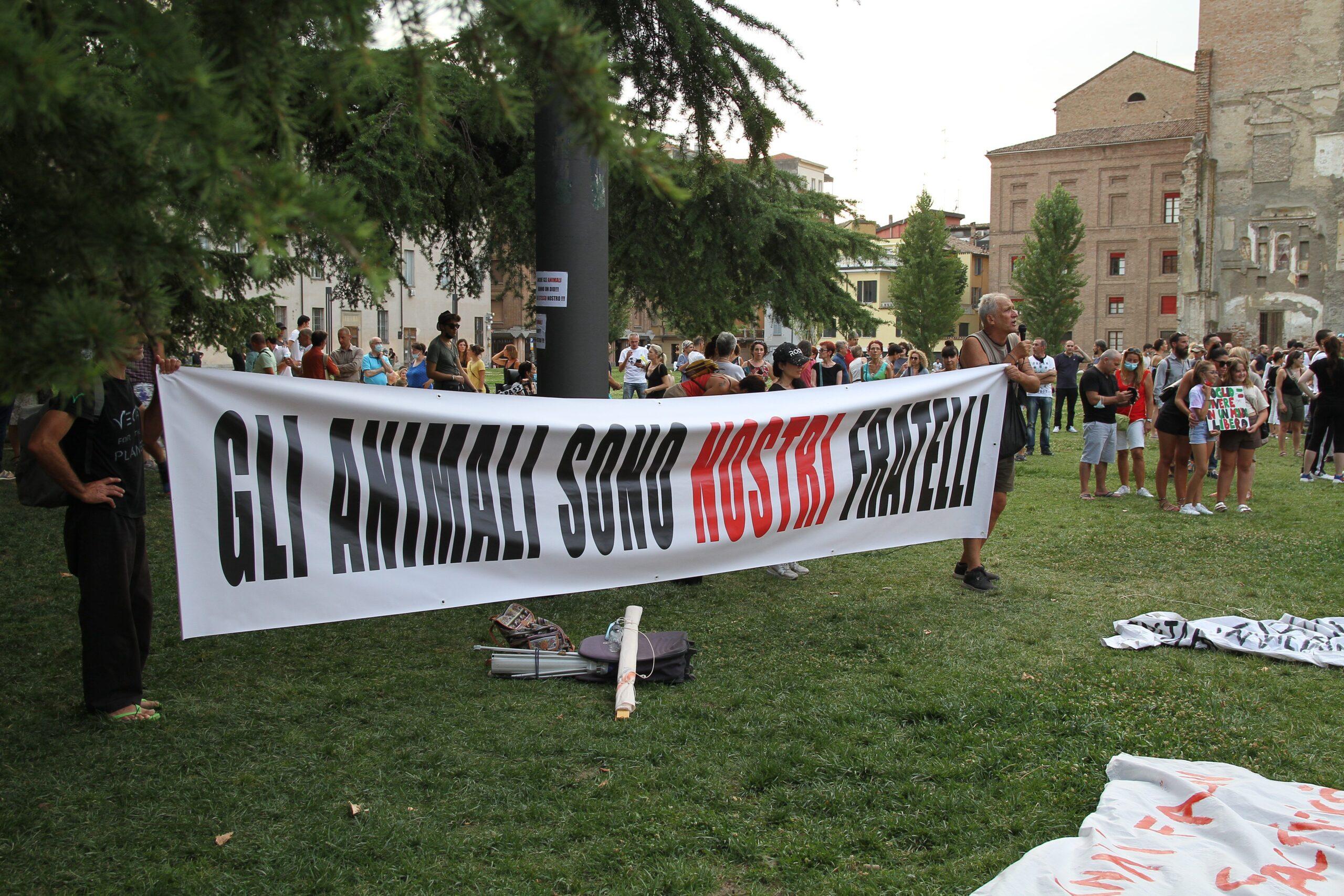 Continua la protesta per la liberazione dei macachi rinchiusi nelle gabbie dell'Universtà di Parma